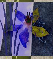 """Blue Borage Collage"""
